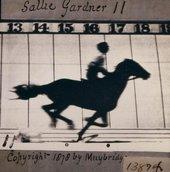 Eadweard Muybridge The Horse in Motion, illus. by Muybridge.