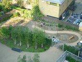 Tate Modern Community garden