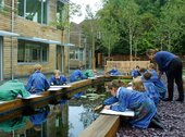 Pupils from St John's College School, Cambridge painting the water lilies in the Quiet Garden
