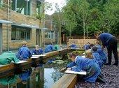 Pupils from St John's College School, Cambridge painting the water lilies in the Quiet Garden