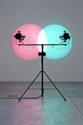 Amalia Pica Venn Diagram (Under the Spotlight) 2011