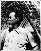 1944-1946 Cuba, Wifredo Lam