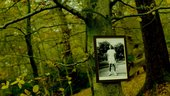John Akomfrah, The Unfinished Conversation still image in forest