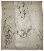 Anthony Van Dyck Studies of a Horse 1633