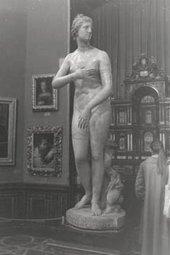 The Venus de'Medici (statue)