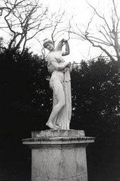 The Venus Kallipygos (statue)