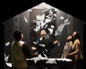 Wang Gongxin Our Sky is Falling in! 2007