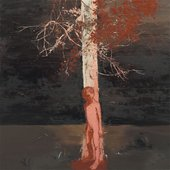 Lisa Wright Shadow Branches 2006 Oil on canvas