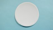 Photograph of a small paper plate