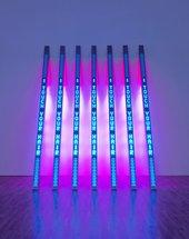 © 2009 Jenny Holzer, member/Artists Rights Society (ARS), New York, Tate