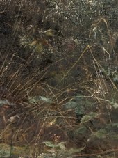 John Everett Millais, Dew-Drenched Furze (detail), 1889–90, oil paint on canvas, 173.2 × 123 cm