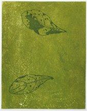 Judy Watson 'heron island suite 6' 2009/10
