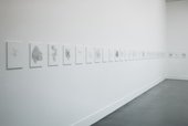 Kathy Prendergast, City Drawings © Tate Photography