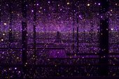 Yayoi Kusama Infinity Mirrored Room - Filled with the Brilliance of Life 2011/2017 Tate Presented by the artist, Ota Fine Arts and Victoria Miro 2015, accessioned 2019 © YAYOI KUSAMA