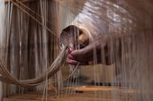 Hands weaving fibre using a loom