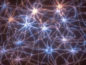 An image of neurons firing