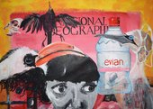 Painting of a collage of objects including a face, water bottle, bird with plastic packaging around head, dead bird and National Geographic magazine cover