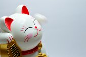 A white lucky chinese cat doll waves