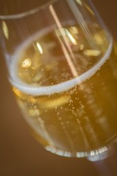 close up of bubbles in a flute of champagne.
