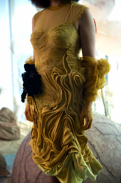 a close up image of Celeste's dress
