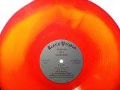 Cauleen Smith Black Utopia LP 2012, slide. Courtesy the artist