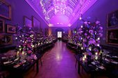 purple light shine in a traditional gallery space