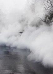 Colour photograph of fog
