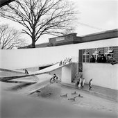 Eileen Agar Photograph of Lubetkin's Penguin Pool at London Zoo [1940s–1950s]