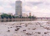 Photo © Tate London, 2003