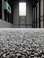 Millions of sunflower seeds on the floor of the turbine hall