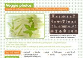 Image from Vegetable Photo activity