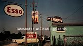 Still from William Eggleston TateShots video