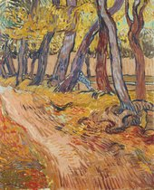 Vincent van Gogh, Path in the garden of the asylum, November 1889, 1889, oil paint on canvas, 61.4 x 50.4 cm