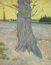 Vincent van Gogh, Trunk of an Old Yew Tree, Arles- October 1888, 1888, oil paint on canvas, 91 x 71 cm