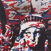 Screen print of the face of the Statue of Liberty with camouflage print over the top