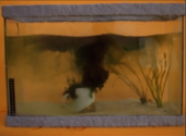 Film still of a coffee cup submerged in a fish tank