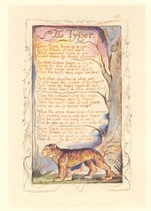 William Blake, Songs of Innocence and of Experience, The Tyger