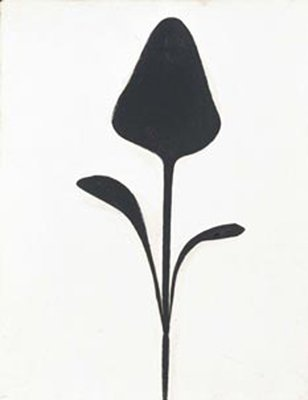 Ellsworth Kelly Drawn From Nature Tate