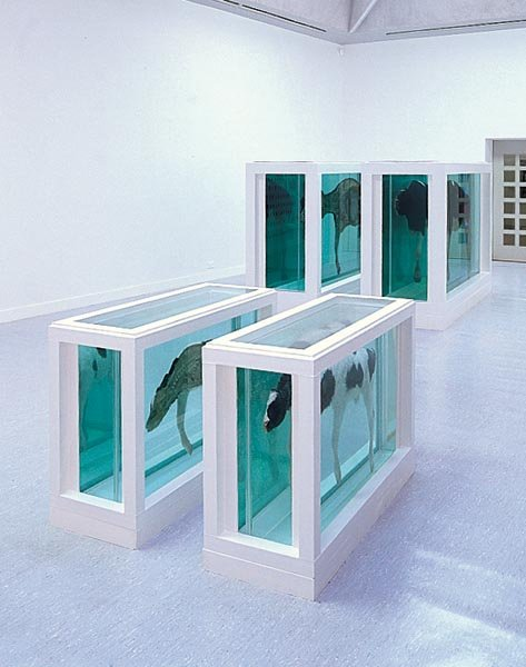 Turner Prize 1995 Artists Damien Hirst Tate